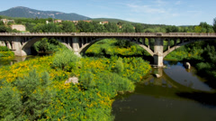 Bridge with Car Traffic from Afar and Trees Underneath in Timelapse Stock Footage