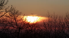 Winter Sunrise in Nature 2 - stock footage