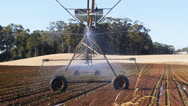 Stock Video Footage of center pivot irrigation-3