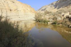 Stream in Ein Avdat and Nachal Zin Natural Reserve - stock photo