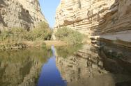 Stock Photo of Reflection at Ein Avdat and Nachal Zin Natural Reserve and Geological Phenomenon