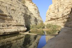 Ein Avdat and Nachal Zin Natural Reserve Oasis - stock photo
