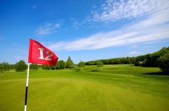 Flag on golf course Stock Photos