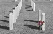 Stock Photo of graves and faded flowers