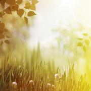 overcoast summer backrounds with faded colors - stock photo
