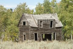 Pioneer Cabin - stock photo