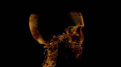 3d Human Skull Fire Up (1920 x 1080) Stock Footage