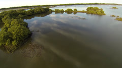 Cedar Key Hammocks from above - stock footage