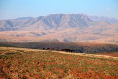 lesotho landscape - stock photo