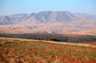 Stock Photo of lesotho landscape