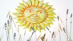 Summer sun stop motion Stock Footage