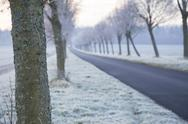 Stock Photo of Germany, Baden-Wuerttemberg, Tuebingen, Einsiedel, avenue in winter in the