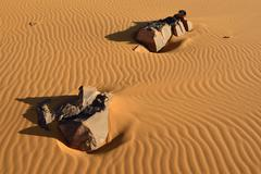North Africa, Algeria, Sahara, sand ripples, stones on a sand dune - stock photo