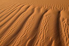 North Africa, Algeria, Sahara, sand ripples, texture on a sand dune - stock photo