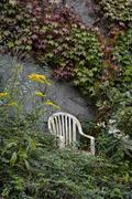 White plastic chair in front of a vegetated wall Stock Photos