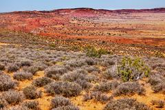 painted desert yellow grass lands orange sandstone red fiery furnace arches n - stock photo
