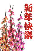 Chinese new year greeting and plum blossom Stock Photos