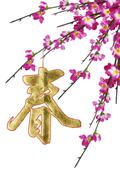 chinese new year calligraphy ornament and plum blossoms - stock photo