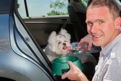 dog drinking water - stock photo