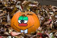 Stock Photo of pumpkin in leaves