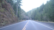 Stock Video Footage of Forest Road Drive