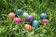 Stock Photo of colorful easter eggs in green grass.
