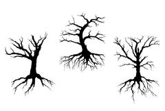 Dead trees with stem and roots Stock Illustration
