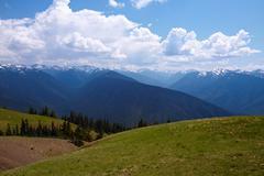 Mountain landscape; hurricane ridge, olympic national park, washington, usa Stock Photos