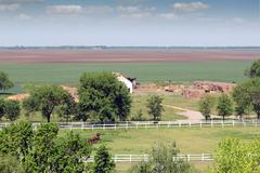 Horses in corral farmland landscape Stock Photos