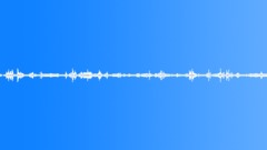 Amb_Night_Forrest_Wind_Gusts_Rustling_Shutter_On_open_Window.wav Sound Effect