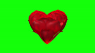 Heart of rose petals on green-screen, loop ready file Stock Footage