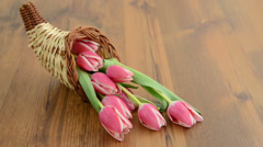 Cornucopia basket with bunch of pink tulips Stock Footage