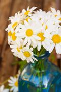 close up of dasy flowers posy - stock photo