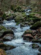 creek with running water - stock photo