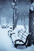 benches in the winter park - stock photo