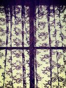 Lace curtains Stock Photos