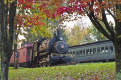 Delaware & Ulster Locomotvie Stock Photos