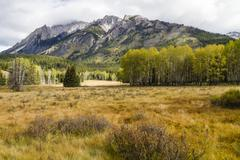 Hillsdale Meadow in Banff National Park Stock Photos
