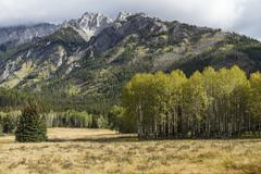 Aspen Stand and Mount Ishbel Stock Photos