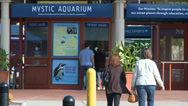 Stock Video Footage of Mystic Aquarium Entrance (2 of 6)