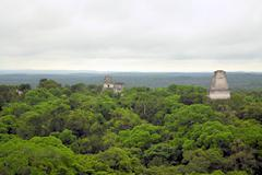 Mayan temples above the forest in tikal, guatemala Stock Photos