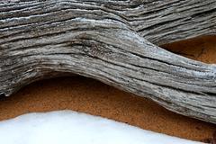 Snowy Driftwood Stock Photos