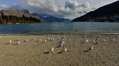 Timelapse Queenstown Lakeside On Cloudy Day Stock Footage