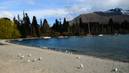 Stock Video Footage of Panning View Of Queenstown Lakeside 720p