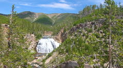 Gibbon Falls in Yellowstone Stock Footage