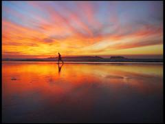 Sunset Jogger Sillouette - stock footage