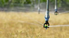 Irrigation sprinkler head close up Stock Footage