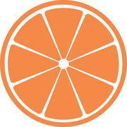 Slice of citrus fruit. Stock Illustration