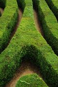 Spiral maze - stock photo