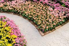 corner of botanic garden with flowers - stock photo